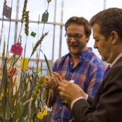 The KWIC has also given tours to government officials and industry partners, like Governor Sam Brownback who is shown here pollinating a double haploid plant.
