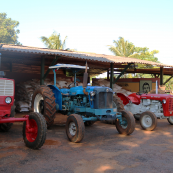 Photo: Several tractors at farm in Cuba.