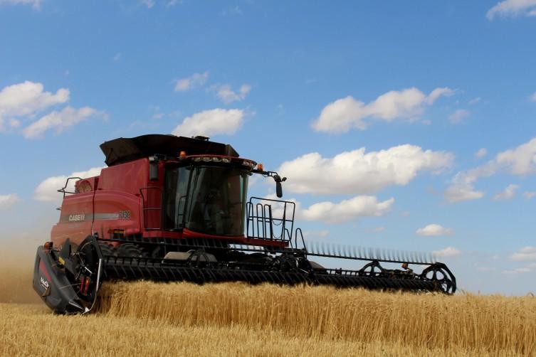 Michael Jordan harvests his wheat in June 2016.