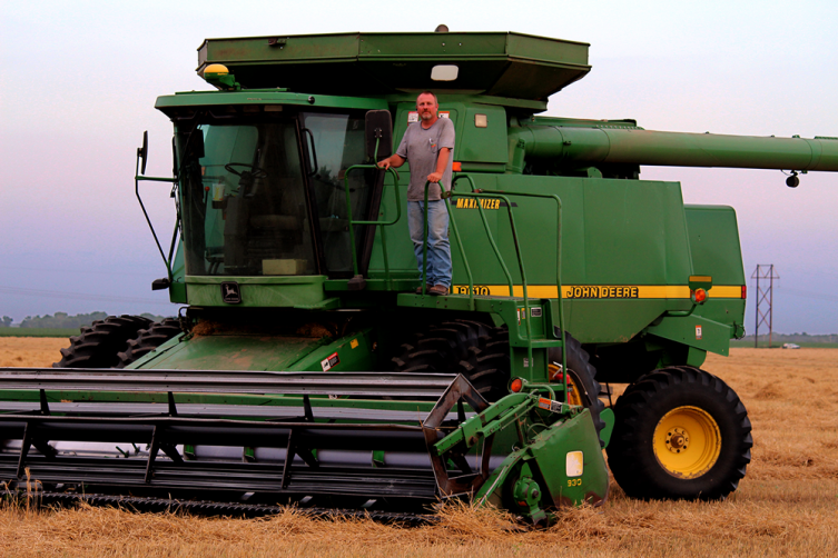 Combine- these gentle giants dominate the golden fields of wheat during harvest time. It scoops and cuts the wheat plant up in the  header, the spinning front part of the combine. From there, the machine sorts the grain from the straw and chaff.