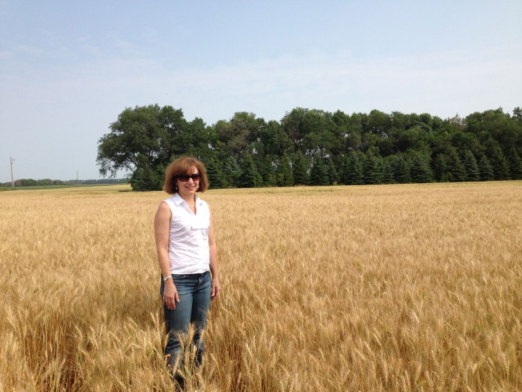 Photo: Palumbo in wheat field.