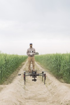 Kansas State University graduate student Daljit Singh leads the high-throughput phenotyping efforts in India for the Feed the Future Innovation Lab for Applied Wheat Genomics