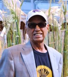 Bikram Gill