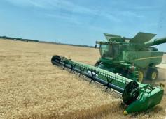 Martin Kerschen's harvest in Sedgwick County.