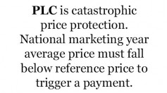PLC is catastrophic price protection. National marketing year average price must fall below reference price to trigger a payment.