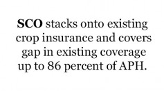 SCO stacks onto existing crop insurance and covers gap in existing coverage up to 86 percent of APH.