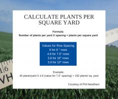 Calculate plants per square yard