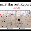 Day 16, Kansas Wheat Harvest Report 2018
